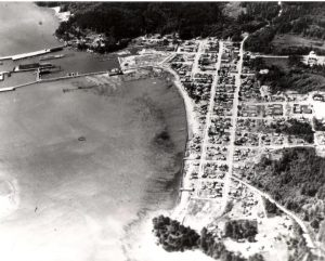Vintage Marina Overview